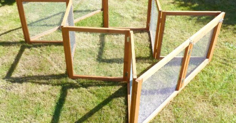 folding chicken coop fencing